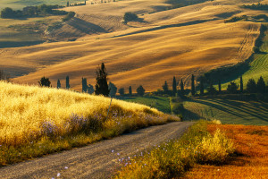 incredible_italian_countryside_tuscany_road_hd-wallpaper-1565204